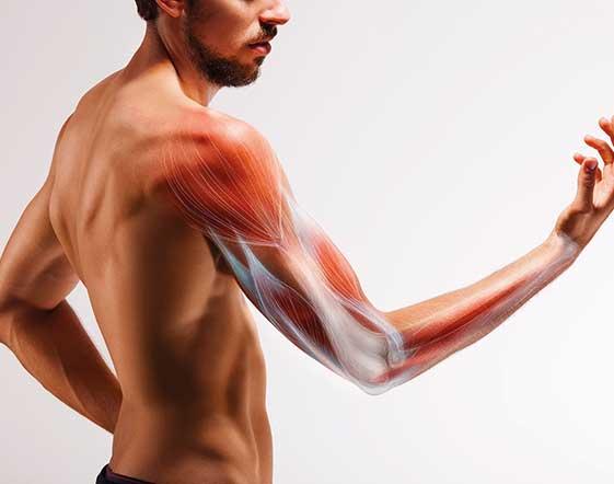 I vantaggi dell'allenamento in superserie: dal body building alla nuova Linea Selection 700